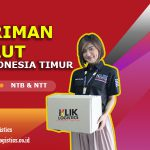Jasa Pengiriman Barang dari Jakarta ke Maumere, NTT